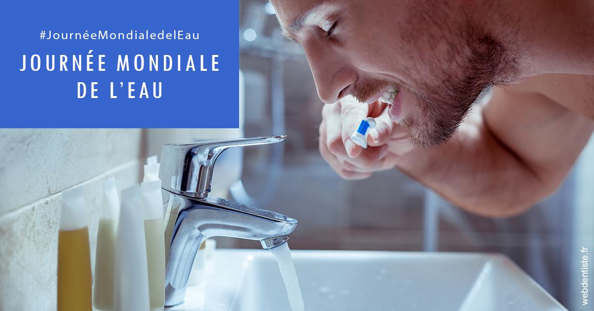 https://dr-maxime-collangettes.chirurgiens-dentistes.fr/Journée de l'eau 2