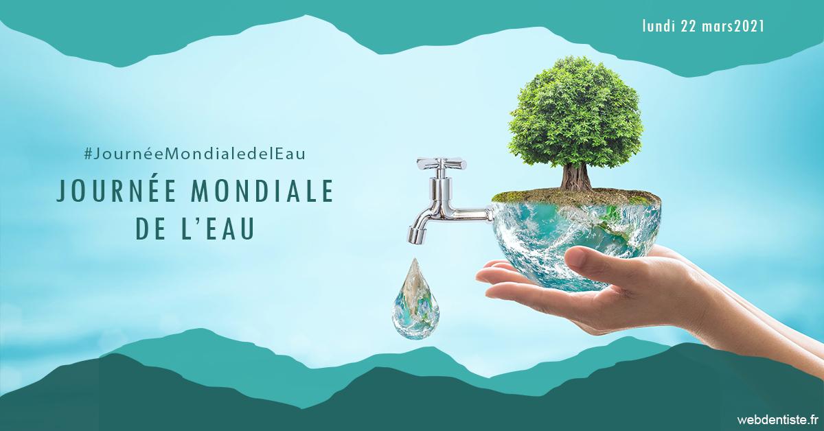 https://dr-maxime-collangettes.chirurgiens-dentistes.fr/Journée de l'eau 1